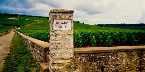vins,cépages,domaines,propriété
